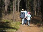 Hiking near Sunwapta Falls